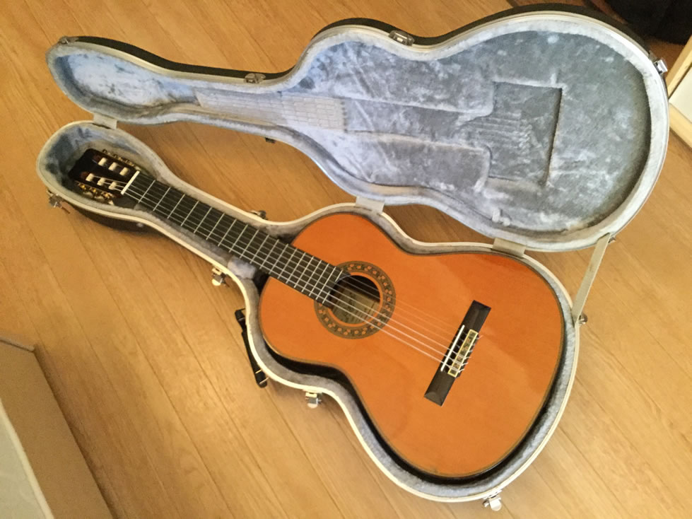 guitar in the case